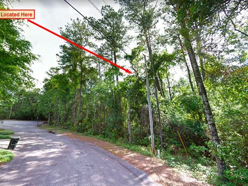 Beautiful Lot In Lake Forest, AL : Lake Forest : Baldwin County : Alabama