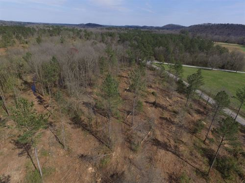 Cedartown Farms - 3.08 Acre Lot : Cedartown : Polk County : Georgia