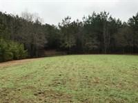 Bogue Chitto Home OR Retreat : Bogue Chitto : Lincoln County : Mississippi