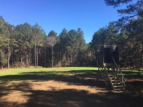 Smyrna Road Tract : Hazlehurst : Copiah County : Mississippi