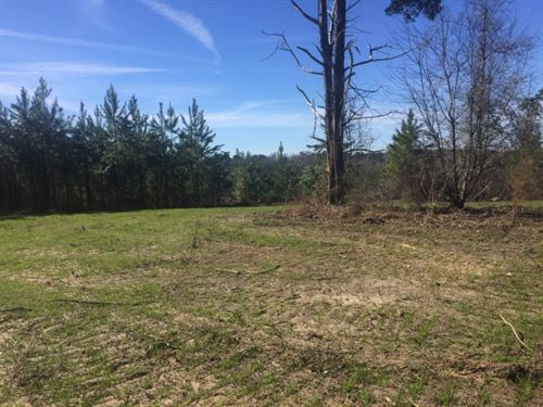 30 Acres Tower Road : Hazlehurst : Copiah County : Mississippi