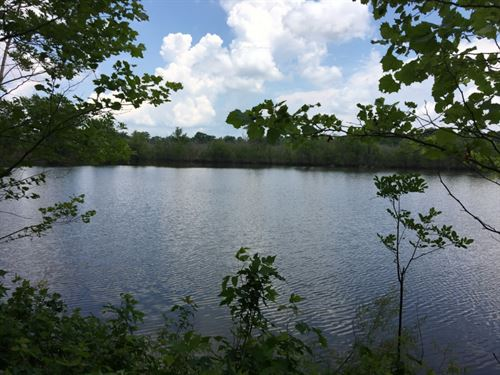 MS Delta Hunting Property, Formerl : Mayersville : Issaquena County : Mississippi