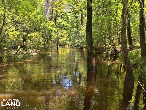 Escatawpa River Tract : Deer Park : Washington County : Alabama