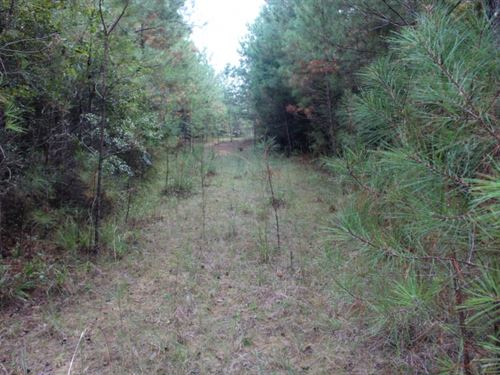 166 Acres In Greene County In Leake : Hillman : Greene County : Mississippi