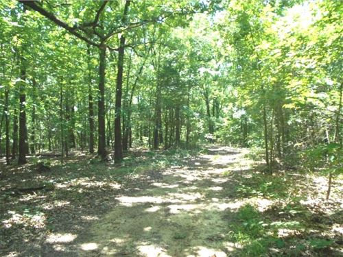 39.2555 Acres In Panola County In : Batesville : Panola County : Mississippi