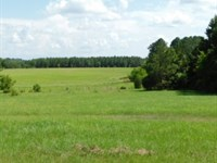 600 Acres In Hinds And Copiah Count : Utica : Hinds County : Mississippi