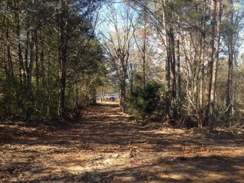 31 Acres In Hinds County : Terry : Hinds County : Mississippi