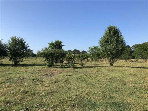 5 Acres Northwest of Searcy Good : Searcy : White County : Arkansas
