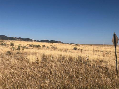 Roy Lots 1-5,8 Blk 32 : Silver Cliff : Custer County : Colorado