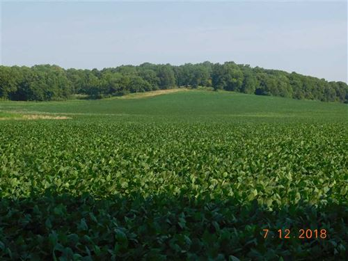 Rowcrop Farm / Building Acreage in : Excelsior Springs : Ray County : Missouri
