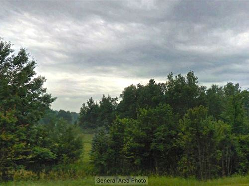 Residential Lot Near Lake Michigan : Raveenna : Muskegon County : Michigan