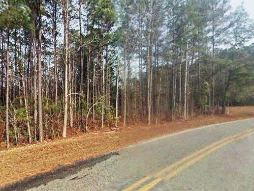 Beautiful Half-Acre In Coastal Town : Rocky Point : Pender County : North Carolina