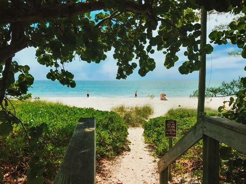 .34 Acres In Citrus Springs, FL : Citrus Springs : Citrus County : Florida
