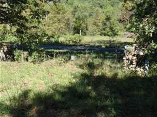193 Acre Hunting Paradise Camden : Roach : Camden County : Missouri