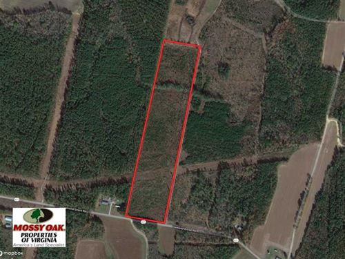 22 Acres of Wooded Hunting Land Fo : Skippers : Greensville County : Virginia