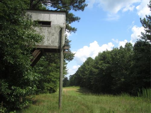 184 Acres In Attala County In Frenc : French Camp : Attala County : Mississippi