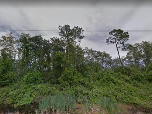 Polk County, Fl $24,500 : Polk City : Polk County : Florida