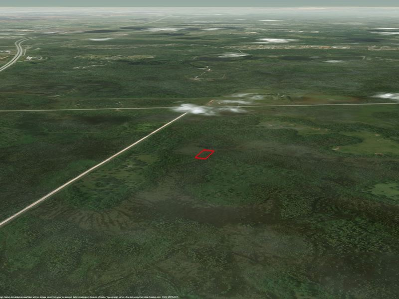 Zero Down Owner Financing 1 01 Acre : Land for Sale by Owner : Polk City :  Polk County : Florida