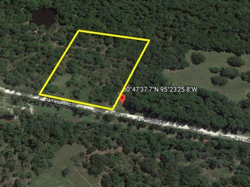 Unrestricted 4 Acre Parcel : Huntsville : Walker County : Texas