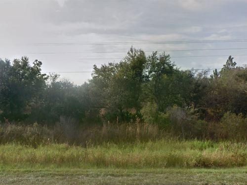 Polk County, Fl $15,000 : River Ranch : Polk County : Florida