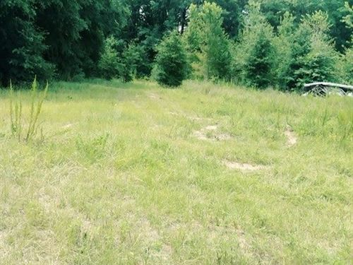 Land In Desirable Wickburg : Newton : Houston County : Alabama