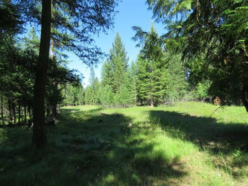 Parmenter Creek 40 Acres : Libby : Lincoln County : Montana