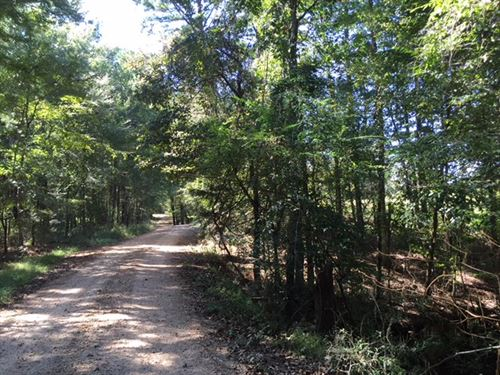 Murray Road Property : Bude : Franklin County : Mississippi