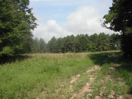 31.65 Acres - Fairfield County, Sc : Winnsboro : Fairfield County : South Carolina
