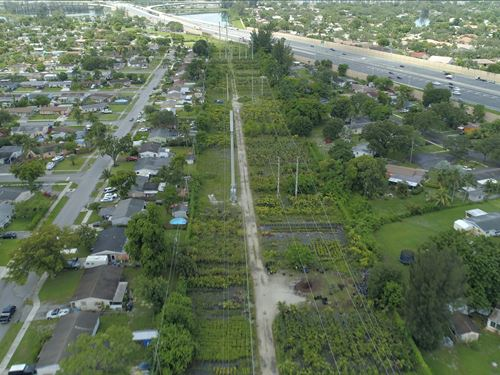Amazing Nursery In Fort Lauderdale : Plantation : Broward County : Florida