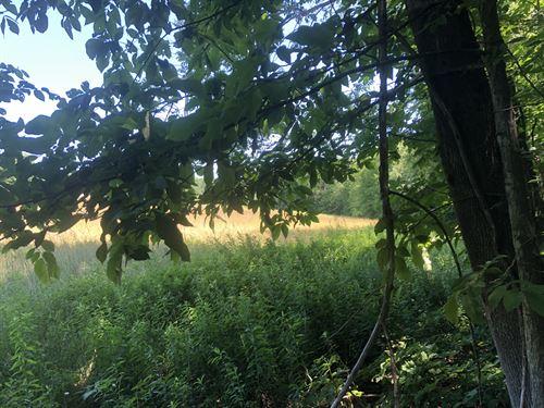 Bordering Whaupaunaucau State Land : North Norwich : New York County : New York