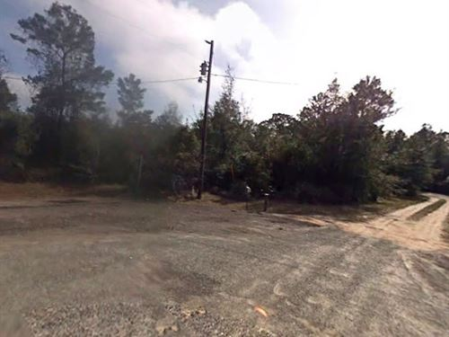 Taylor County, Fl $42,000 : Perry : Taylor County : Florida