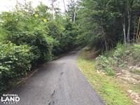 Grants Mill Road Homesite Timber : Birmingham : Jefferson County : Alabama