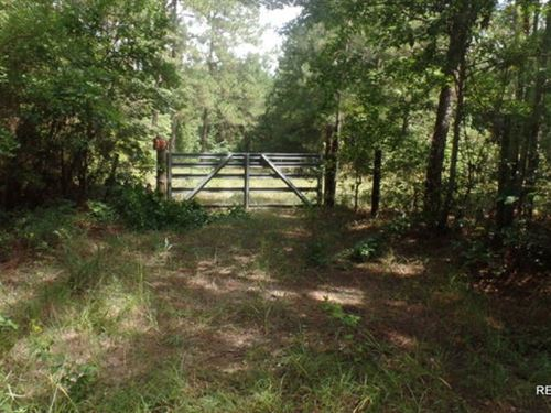 58.5 Ac, Hunting Bordering Nationa : Burkeville : Sabine County : Texas