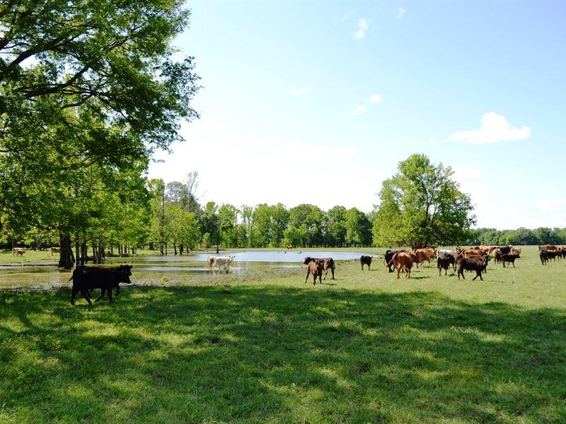 Hopson Farms : Tallassee : Elmore County : Alabama