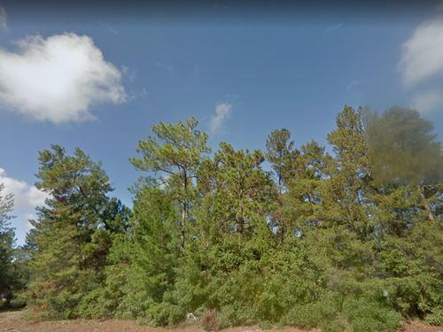 Volusia County, Fl $150,000 : Deltona : Volusia County : Florida