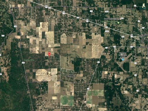 Levy County, Fl $25,000 Reduced : Williston : Levy County : Florida