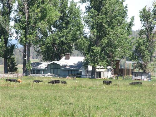 Green Ranch : Bonanza : Klamath County : Oregon