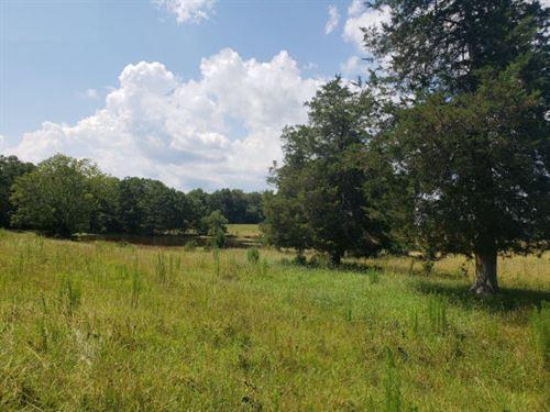 42 Ac - The Perfect Minifarm : Lancaster : South Carolina