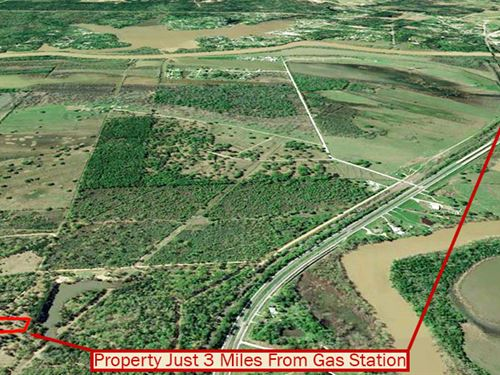 Peaceful Plantation Acreage : Trinity : Texas