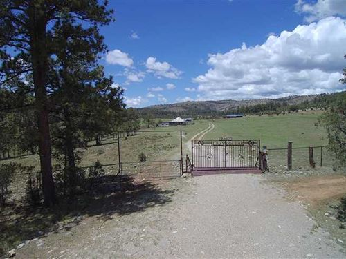 Mountain Retreat With 457 Acres Ho : Weed : Otero County : New Mexico