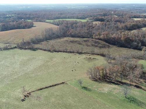 65 Acres Ready For Cattle And a Ho : Perryville : Bollinger County : Missouri