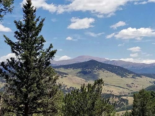 Well And Septic : Cripple Creek : Teller County : Colorado