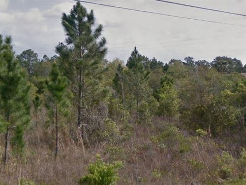 Orange County, Fl $70,000 Neg : Orlando : Orange County : Florida