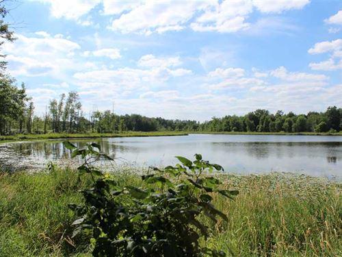 The Family Paradise, 154 Acres WI : Hamilton : Steuben County : Indiana