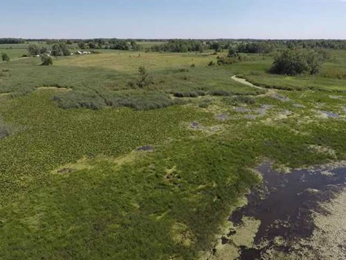52 Acres of Hunting Land Off Auror : Berlin : Waushara County : Wisconsin