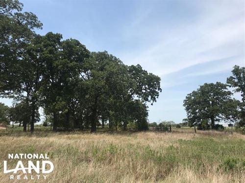 13.42 ac Canton, Pasture, Timber : Mabank : Van Zandt County : Texas