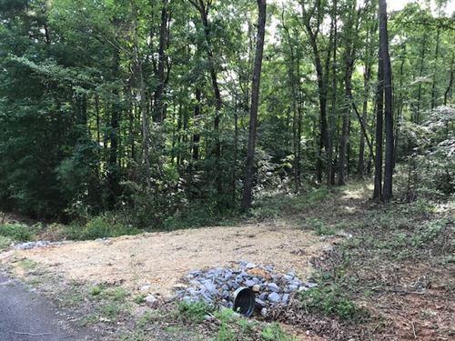 Beaver Ridge 18 Acre Home Site : Ashville : Saint Clair County : Alabama
