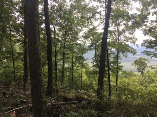 7.04+/-Acres View Of Tn Mtns : South Pittsburg : Marion County : Tennessee