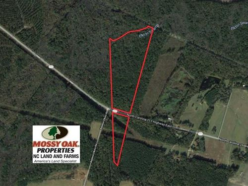 Reduced, 50 Acres of Mature Timbe : Clarkton : Bladen County : North Carolina
