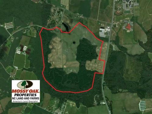 382 Acres of Farm And Timber Land : Richlands : Onslow County : North Carolina